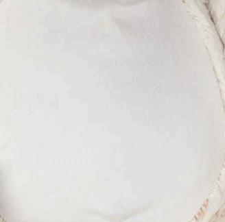 Bella Bunny Tummy