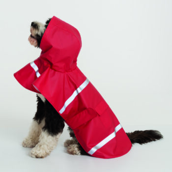 1099 Doggie Rain Jacket   Red